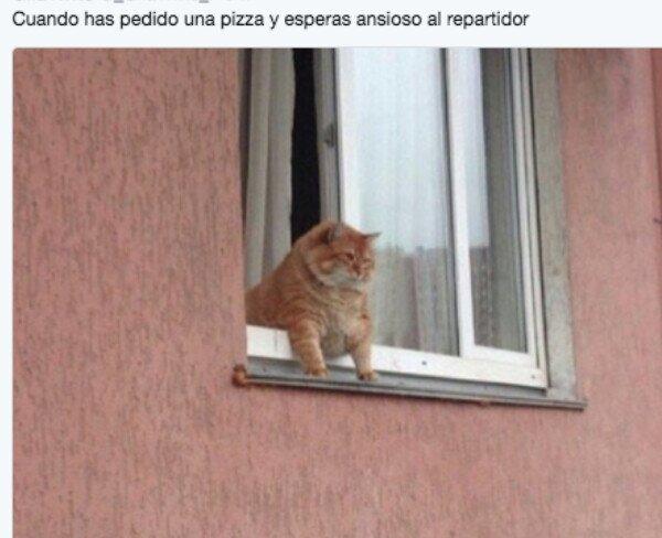 Meme_otros - Vamos, ven ya...