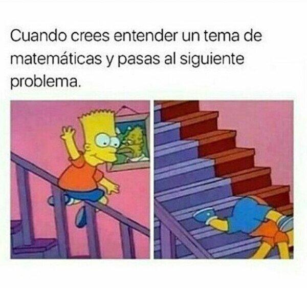 Meme_otros - Por un momento me creí un matemático experto