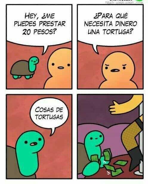 Meme_otros - No te imaginas de lo que es capaz una simple tortuga