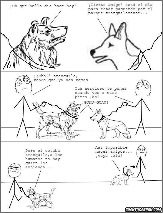 Otros - Pobres perros, ellos sólo quieren socializar pero sus dueños se los impiden...