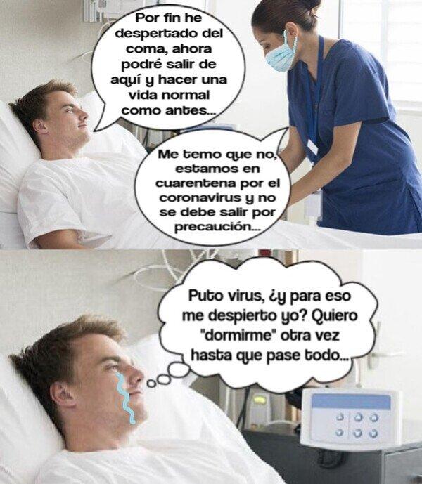 Meme_otros - Mal momento ha cogido para despertarse del coma...