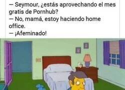 Enlace a ¡Hay que aprovecharlo, Seymour!