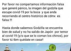 Enlace a ¡Tranquilos! Godzilla está bien
