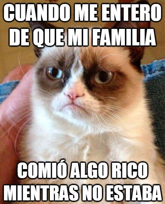 Grumpy_cat - Traidores...