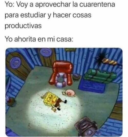 Meme_otros - Mi intención era ser productivo