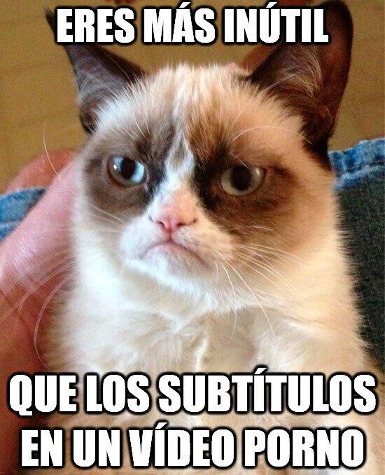 Grumpy_cat - Bastante inútil