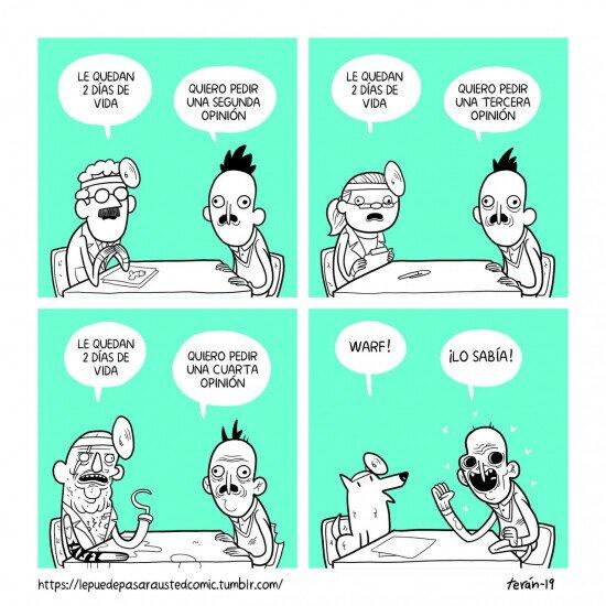 doctor,médico,morir,perro,segunda opinión