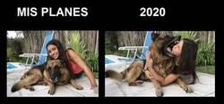Enlace a Si este año fuera un perro