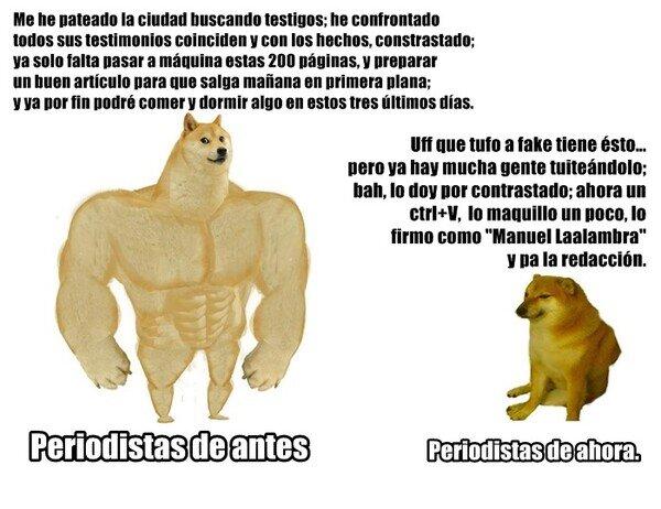 Meme_otros - Periodismo de investigación.
