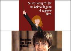 Enlace a Harry tiene razón