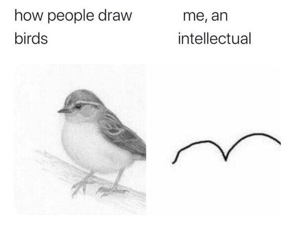 dibujar,fail,pájaro,yo