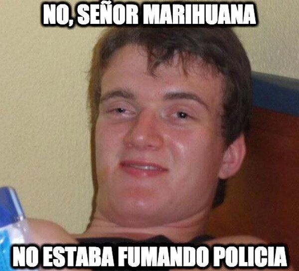 Colega_fumado - No, señor marihuana