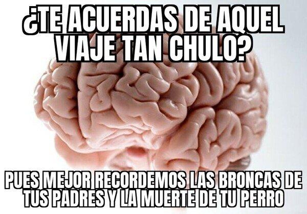 Cerebro_troll - ¿Por qué mi cerebro quiere que me suicide?
