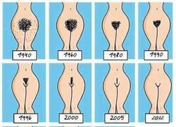 Enlace a La evolución del vello púbico