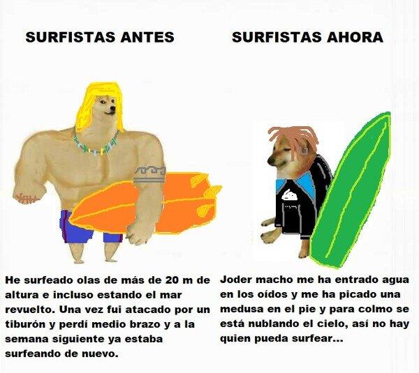 Meme_otros - Los surfistas de ahora no son ya los que eran antes...