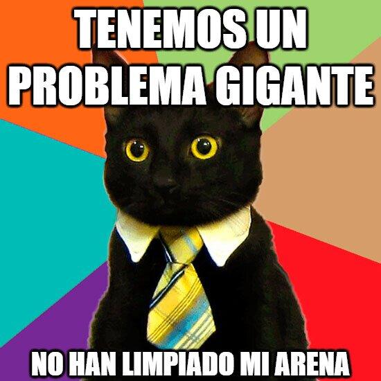 Gato_empresario - Es URGENTE