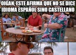 Enlace a ¿Castellano o español?