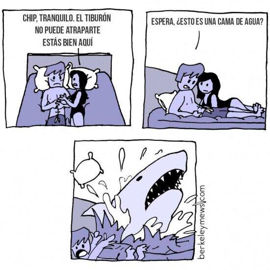 Otros - El tiburón puede acechar en cualquier momento