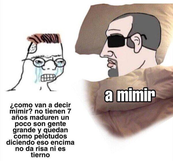 Meme_otros - Simplemente, a mimir