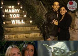 Enlace a El maestro Yoda le ayudó a montar la declaración
