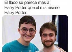 Enlace a Más Harry Potter que Harry Potter