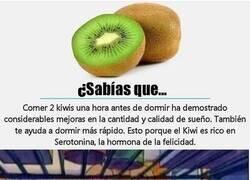 Enlace a ¡Qué gran fruta es el kiwi!