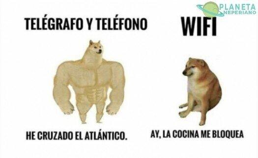cocina,cruzar,internet,mar,teléfono,wifi