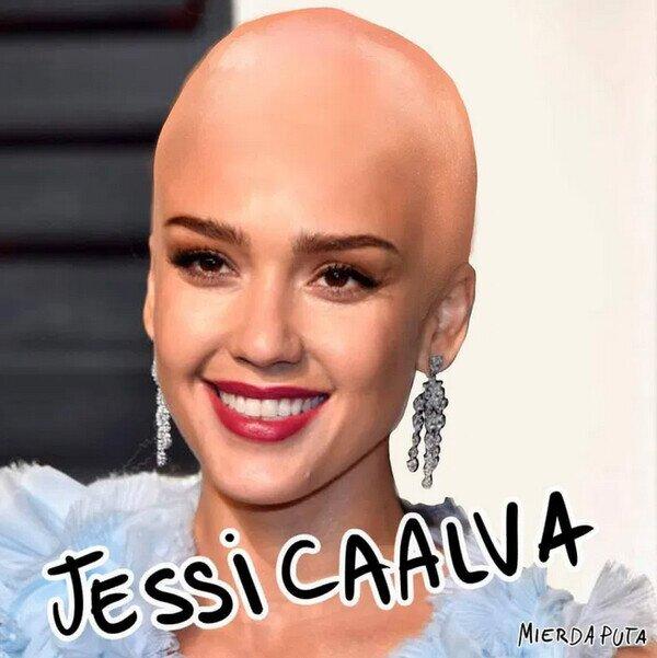 actriz,calva,Jessica Alba,tontería