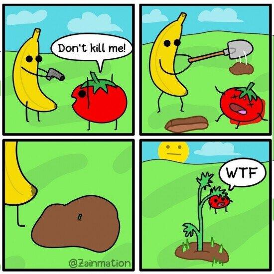 crecer,enterrar,matar,nacer,tomate