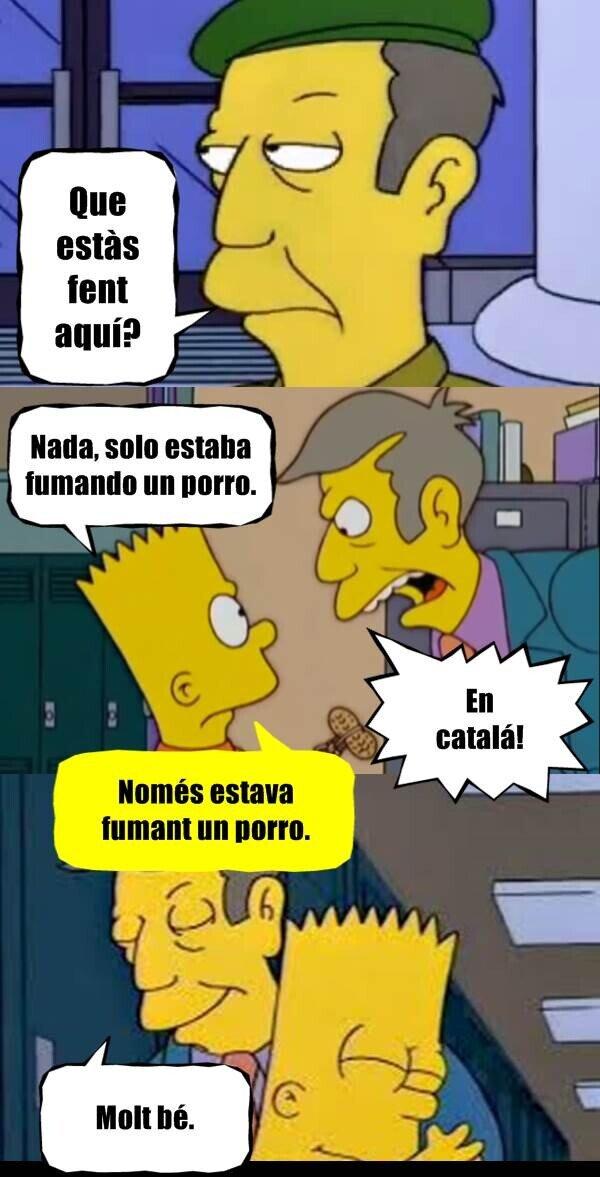 Meme_otros - Ley Celaa en Cataluña...