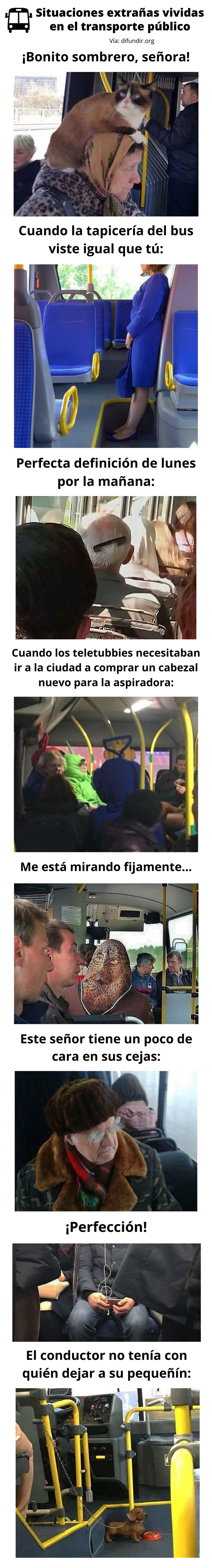 Meme_otros - Situaciones extrañas vividas en el transporte público