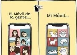 Enlace a El móvil de alguien que tiene gato