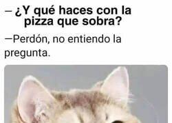 Enlace a ¿Pizza que qué?