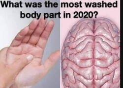 Enlace a ¿Cuál es la parte del cuerpo que más hemos lavado en 2020?