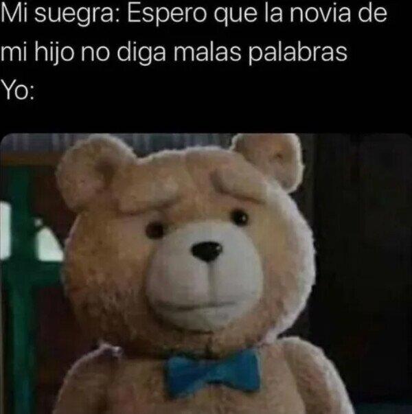 oso,palabrotas,suegra,tacos,ted,yo
