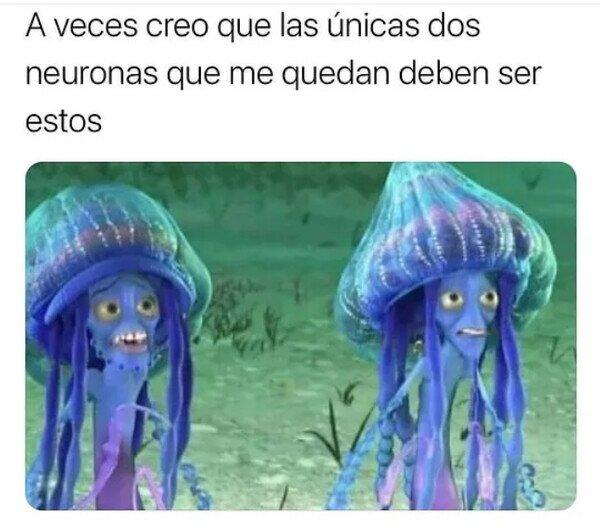 espantatiburones,medusas,neuronas