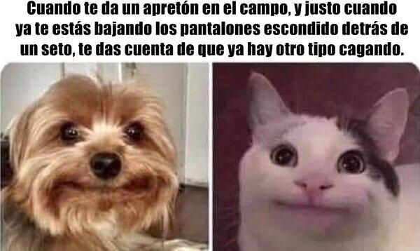 Meme_otros - Leyendas interurbanas...