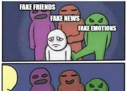 Enlace a No todo lo falso es malo