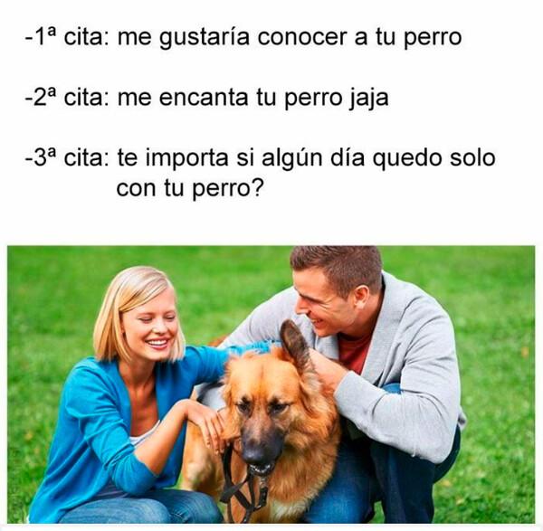 Meme_otros - Cuando intento ligar mediante mi perro