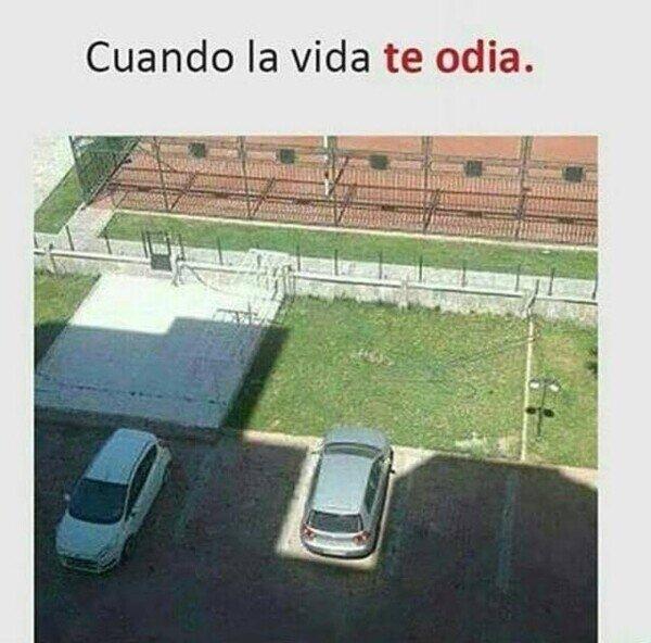 aparcado,coche,odio,sol,sombra,vida