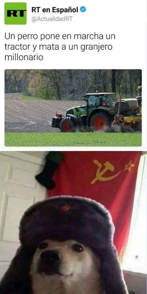 Meme_otros - El perro comunista