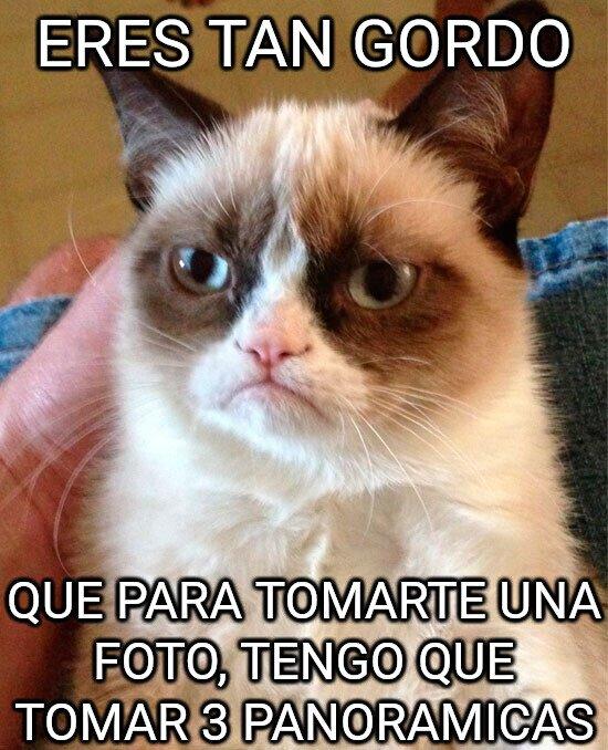 Grumpy_cat - Foto para uno