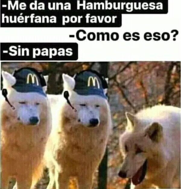 Meme_otros - La hamburguesa huérfana