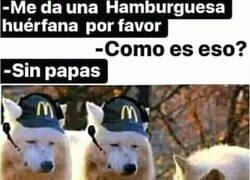 Enlace a La hamburguesa huérfana