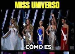 Enlace a Miss Universo pero solo participan mujeres de la Tierra