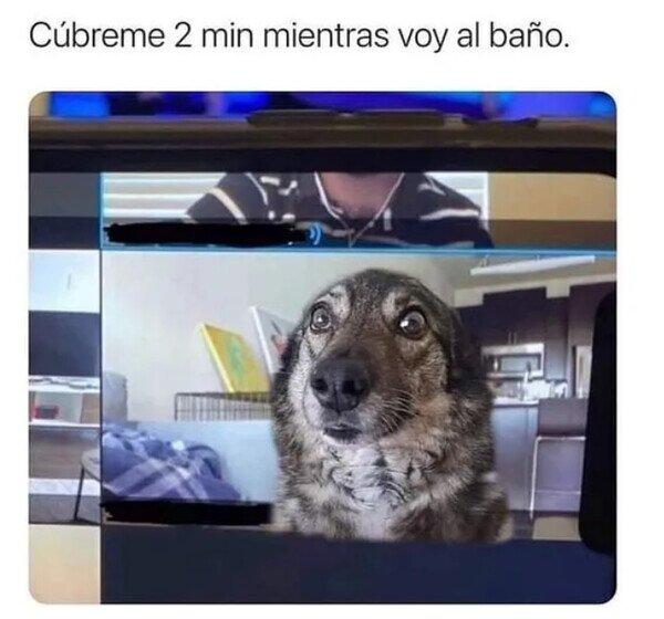 Meme_otros - Un perro te sirve para todo