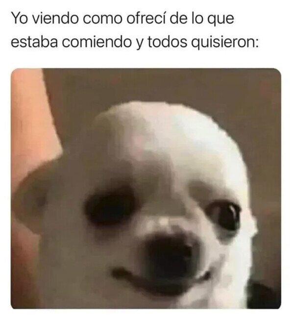 Meme_otros - ¡Maldita sea!