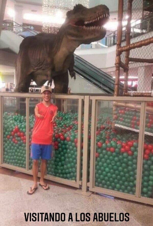 abuelos,brazos,dinosaurio,T-Rex