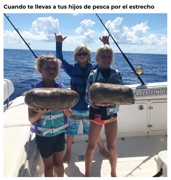Meme_otros - ¡Qué peces más raros, papá!