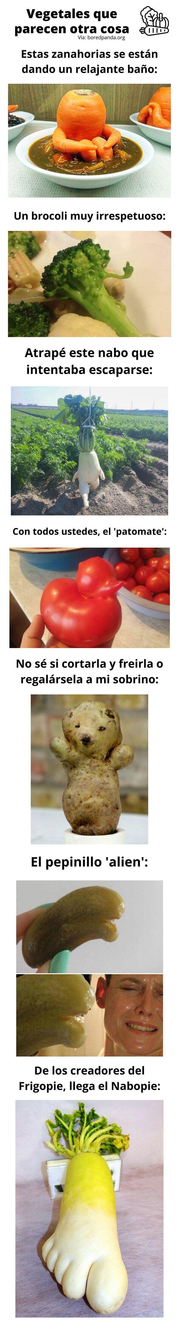Meme_otros - Vegetales que parecen otra cosa